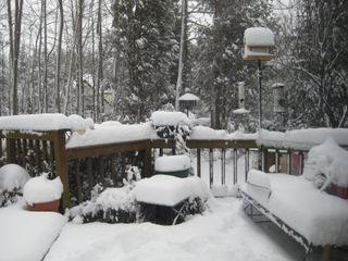 Snow 3-2-09 003